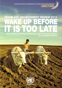 Wake Up Before It Is Too Late UNCTAD 2013.